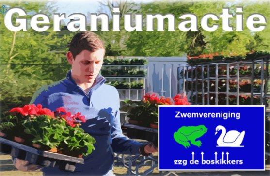 geraniums2021.jpg